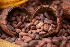 Green America ranks chocolate makers on ethics